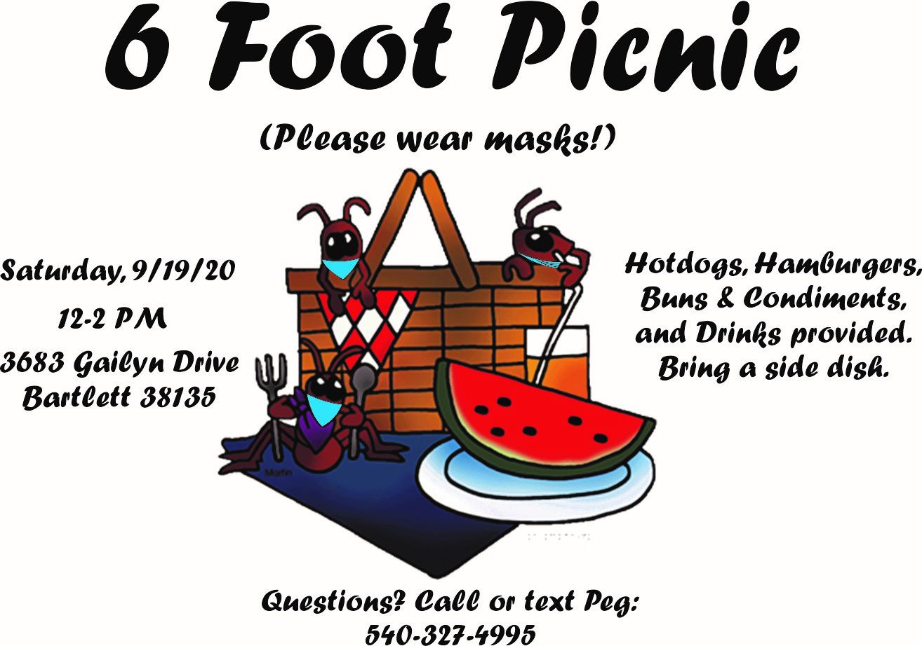 6 Foot Picnic